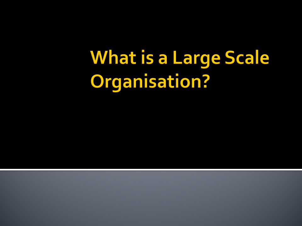 What is a Large Scale Organisation