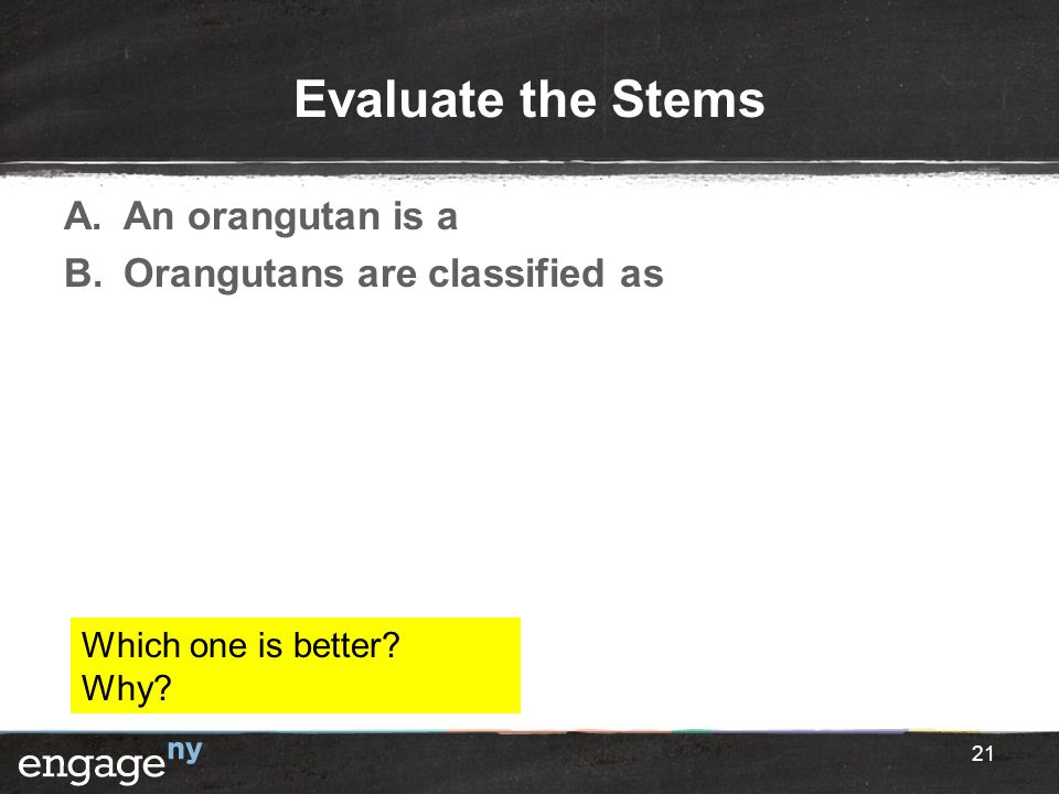 Evaluate the Stems An orangutan is a Orangutans are classified as