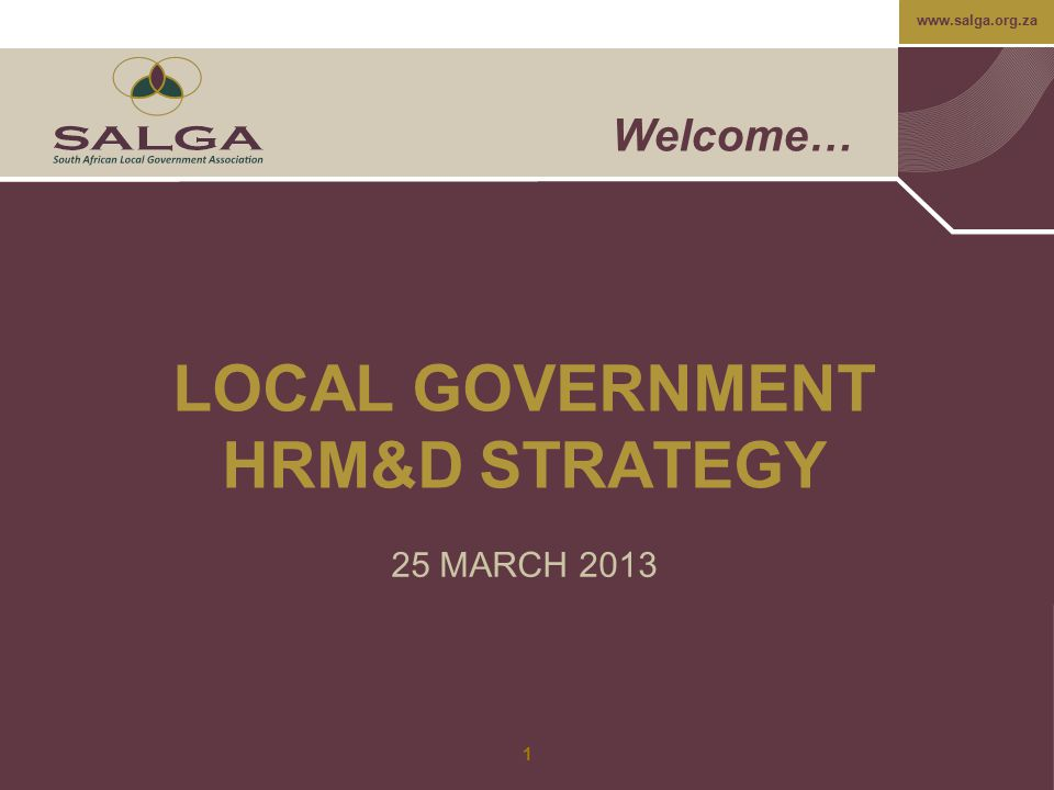 LOCAL GOVERNMENT HRM&D STRATEGY
