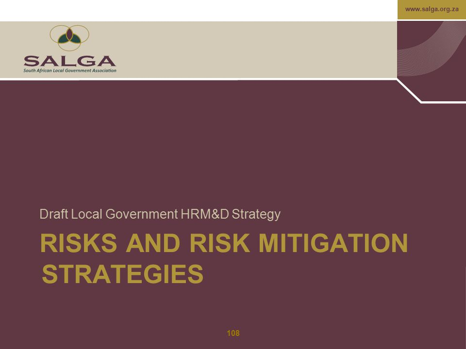 Risks and risk mitigation strategies