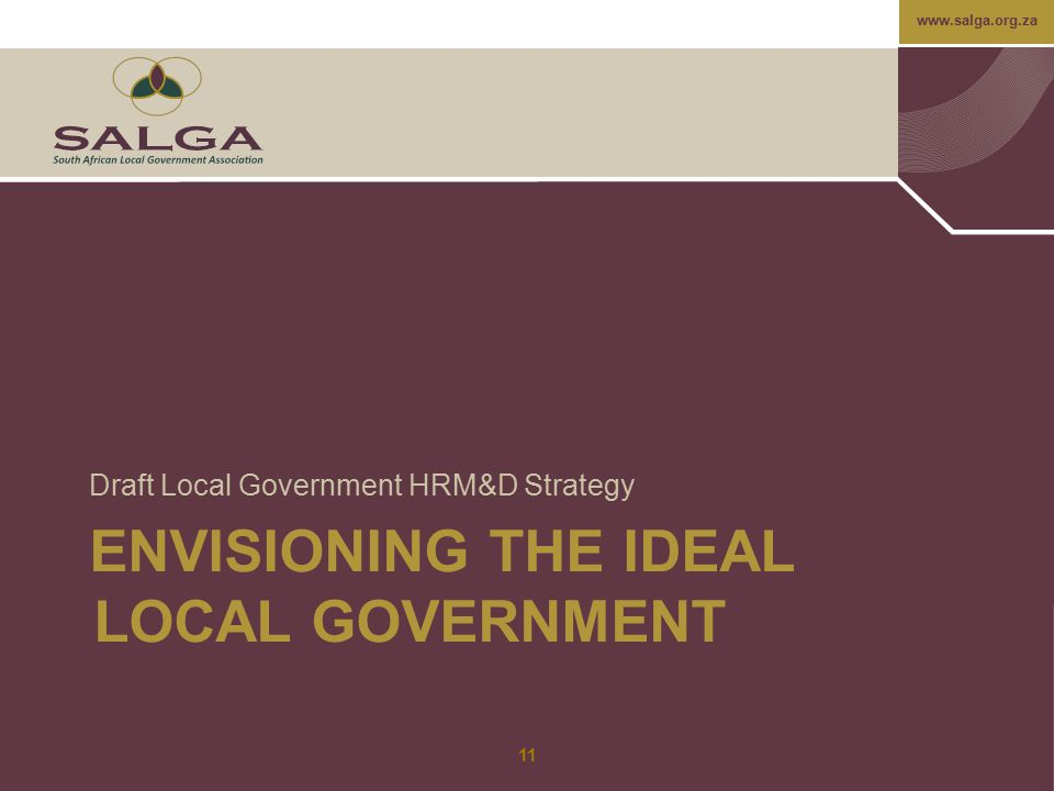 Envisioning the ideal local government