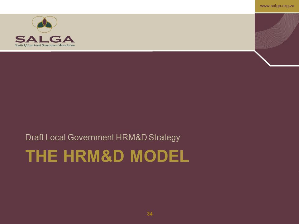 Draft Local Government HRM&D Strategy