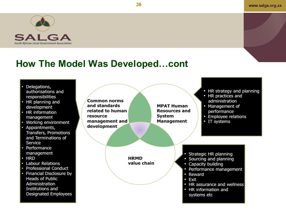 How The Model Was Developed…cont