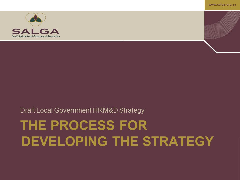 THE PROCESS FOR DEVELOPING THE STRATEGY