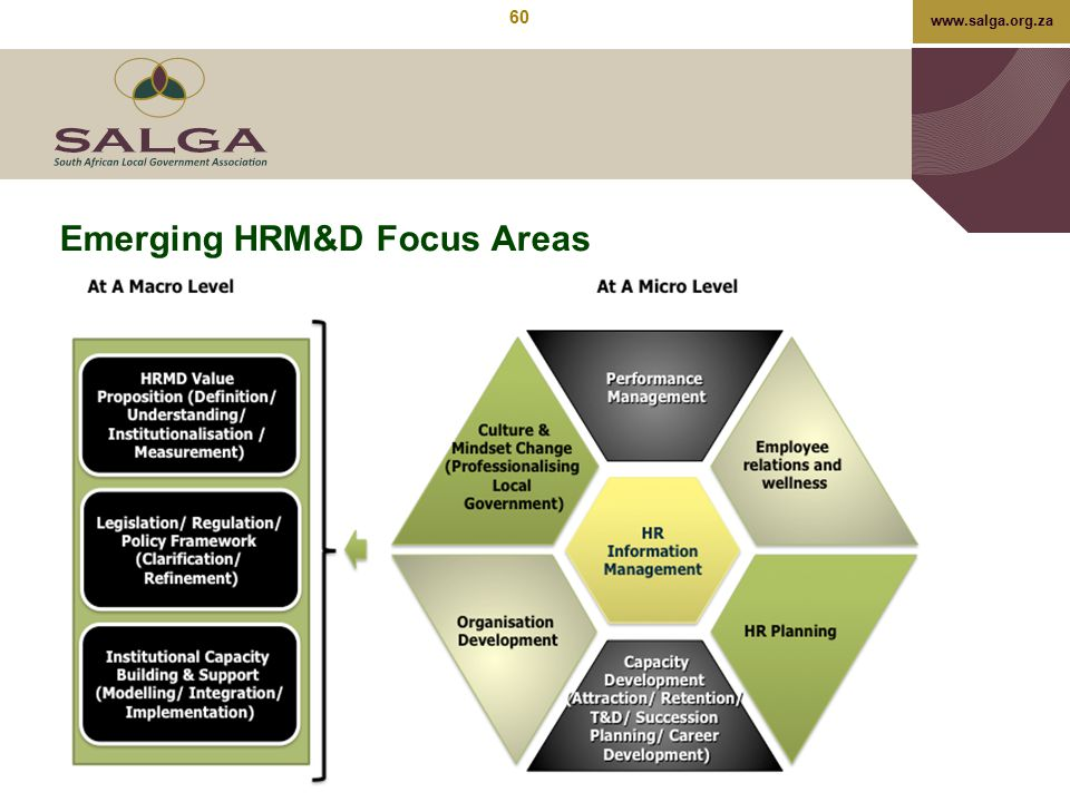 Emerging HRM&D Focus Areas