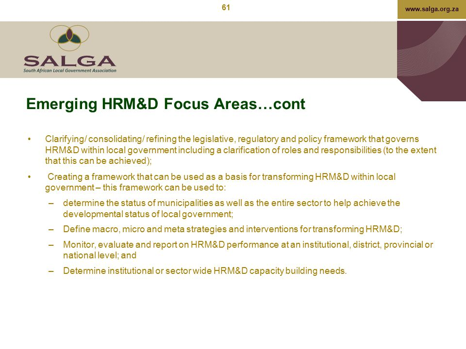 Emerging HRM&D Focus Areas…cont