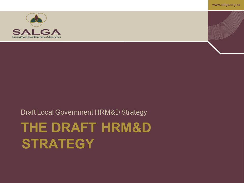 The Draft HRM&D strategy