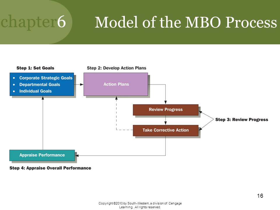 Model of the MBO Process