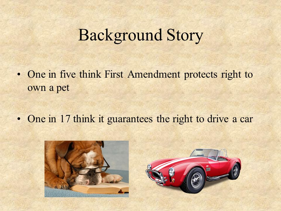 Background Story One in five think First Amendment protects right to own a pet.