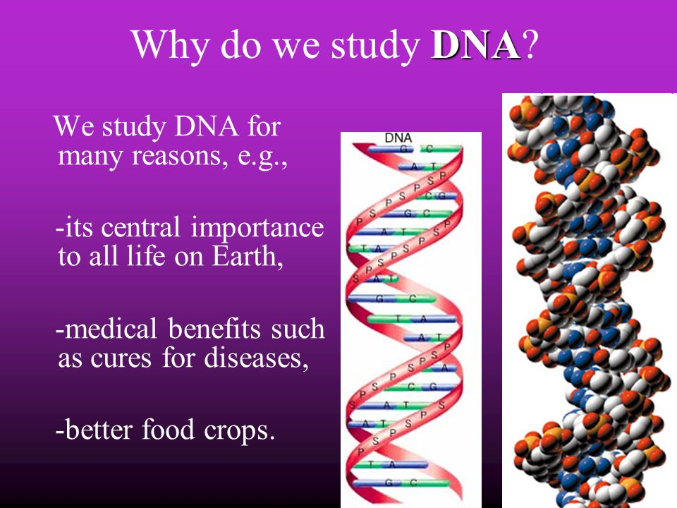 Why do we study DNA -its central importance to all life on Earth,