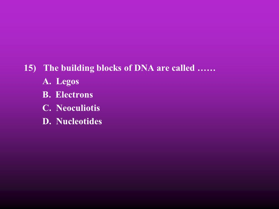 15) The building blocks of DNA are called ……