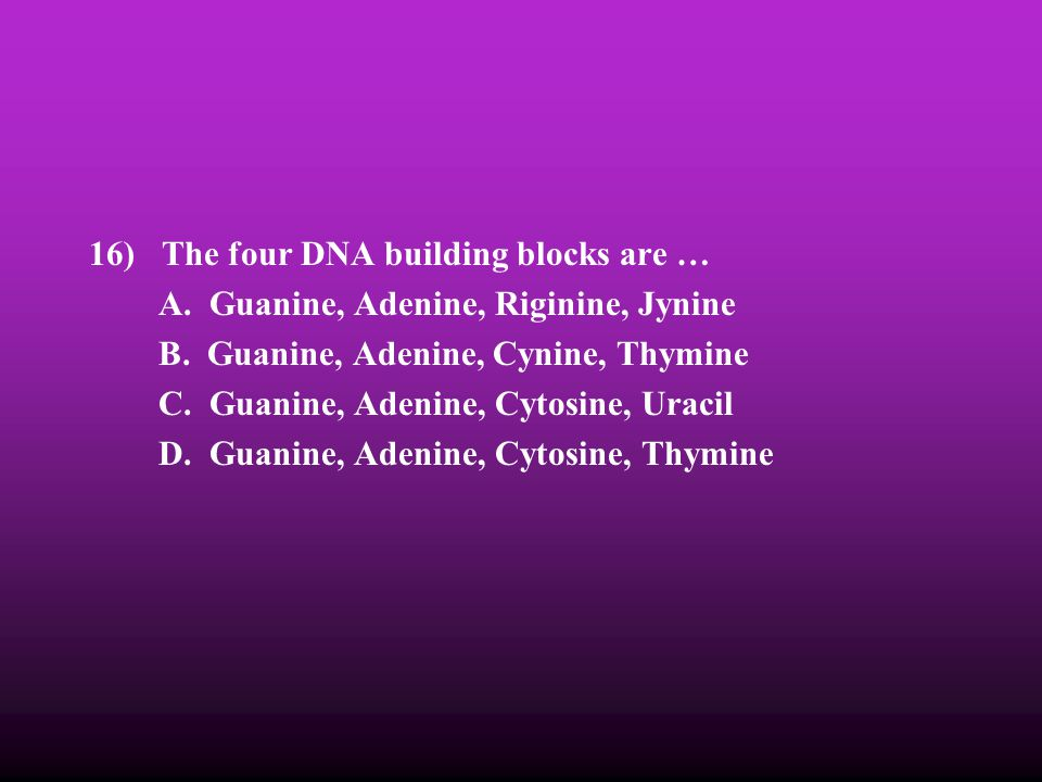16) The four DNA building blocks are …