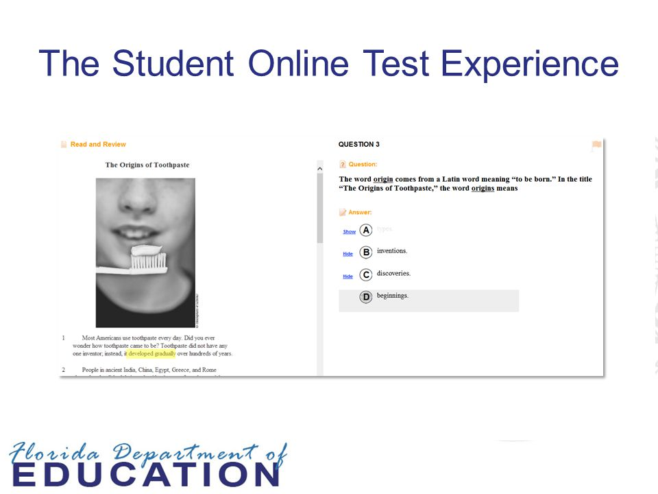 The Student Online Test Experience