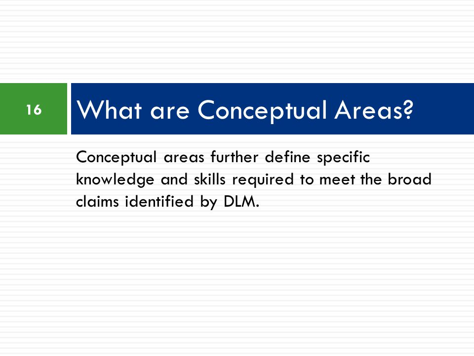 What are Conceptual Areas