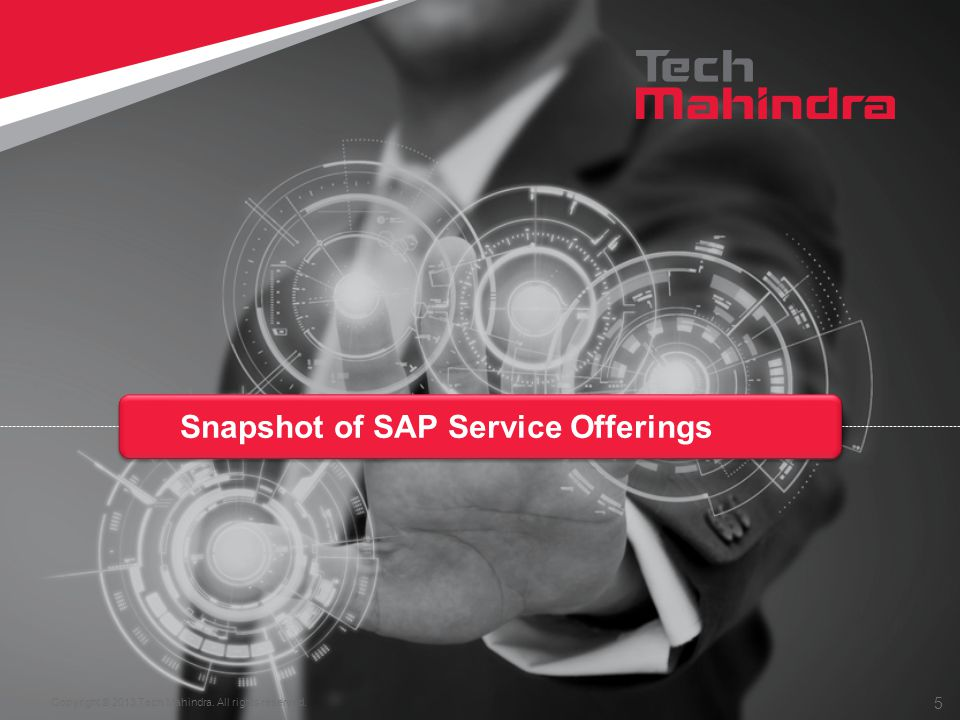 Snapshot of SAP Service Offerings