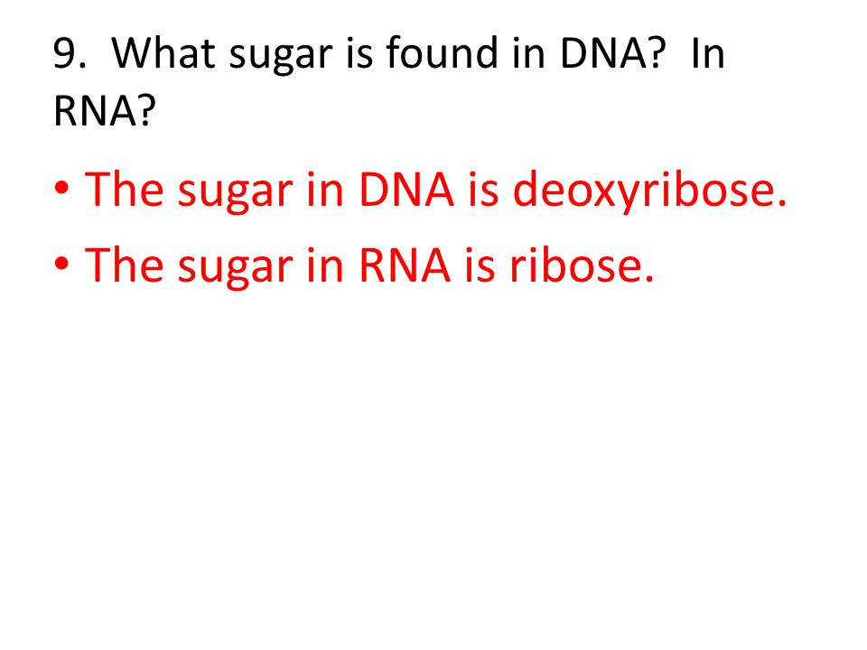 9. What sugar is found in DNA In RNA
