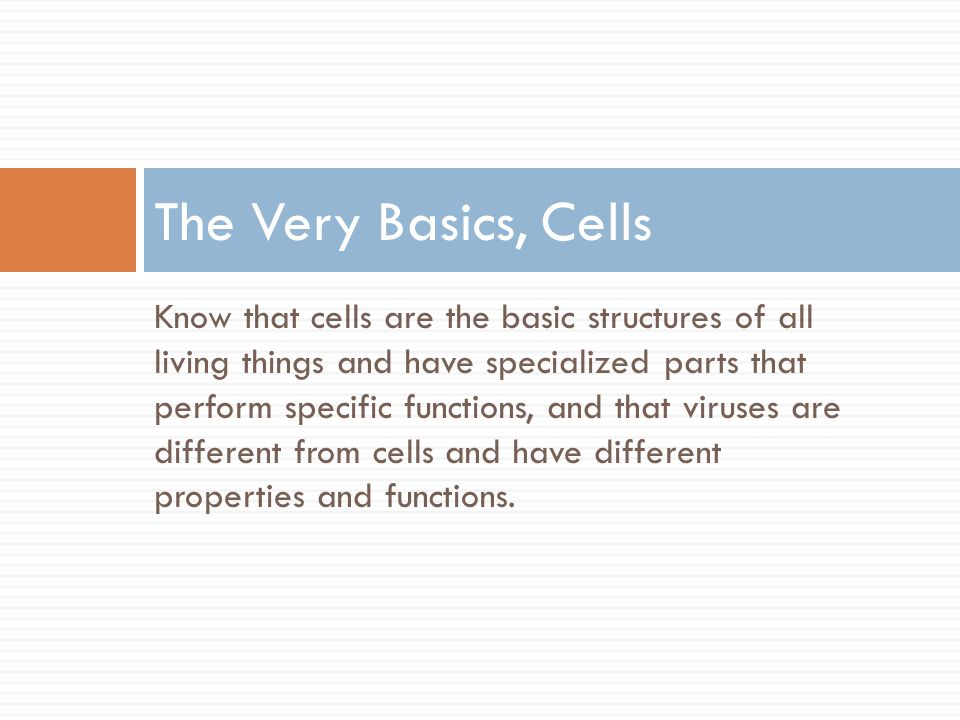 The Very Basics, Cells