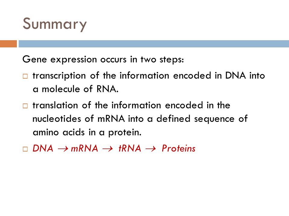 Summary Gene expression occurs in two steps: