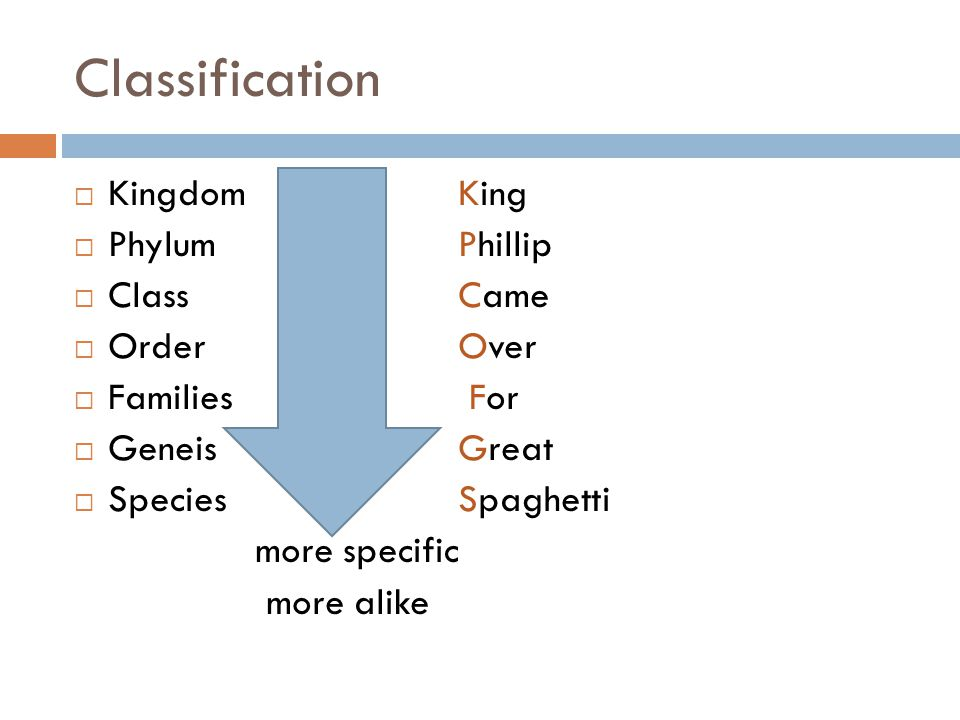 Classification Kingdom King Phylum Phillip Class Came Order Over