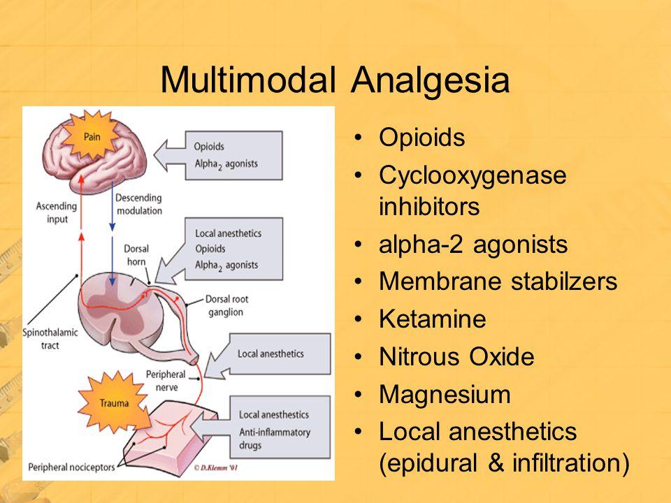 Multimodal Analgesia Opioids Cyclooxygenase inhibitors