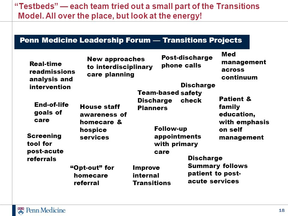 Testbeds — each team tried out a small part of the Transitions Model