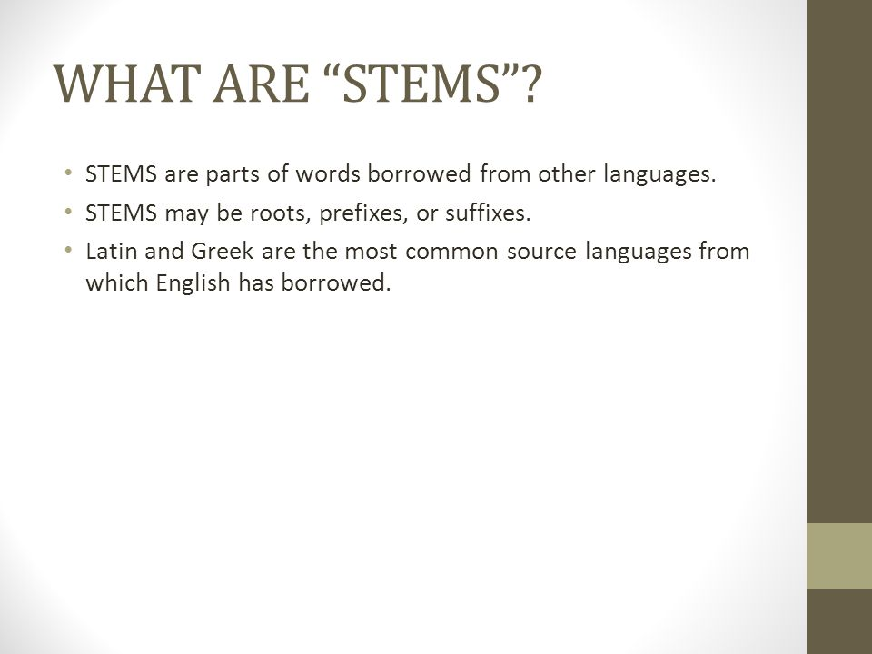 WHAT ARE STEMS STEMS are parts of words borrowed from other languages. STEMS may be roots, prefixes, or suffixes.