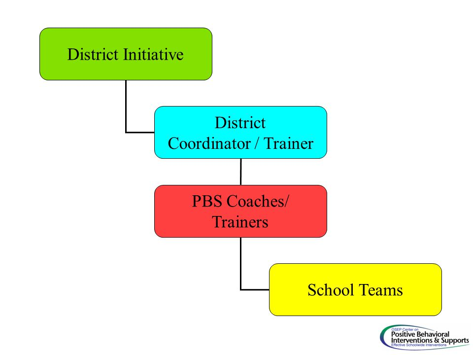 District Initiative District Coordinator / Trainer PBS Coaches/