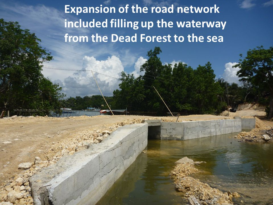 Expansion of the road network included filling up the waterway from the Dead Forest to the sea