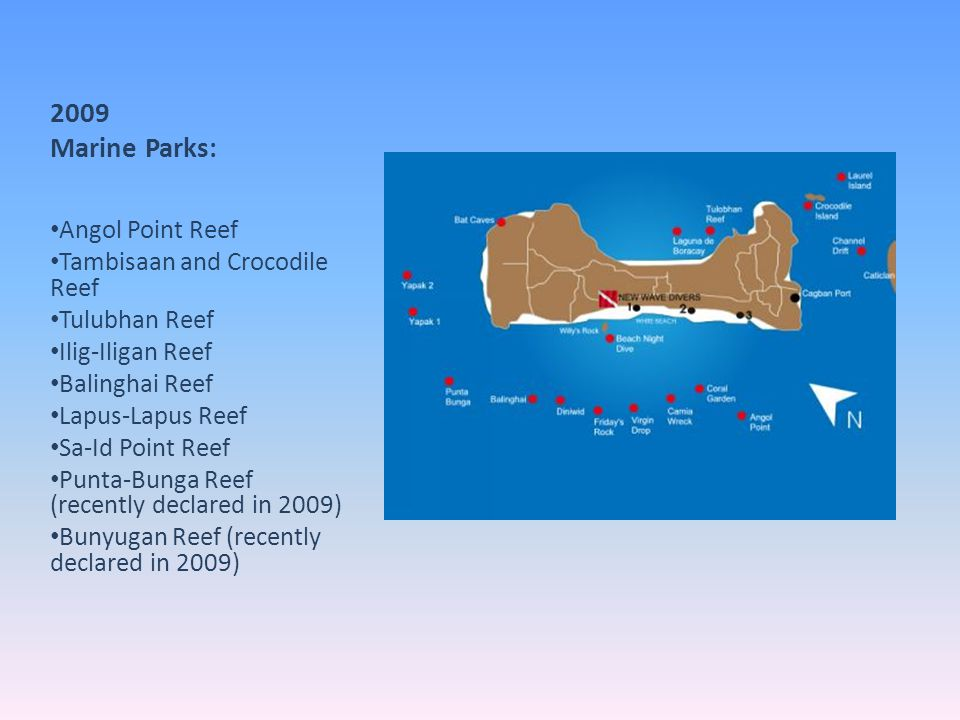 2009 Marine Parks: Angol Point Reef Tambisaan and Crocodile Reef
