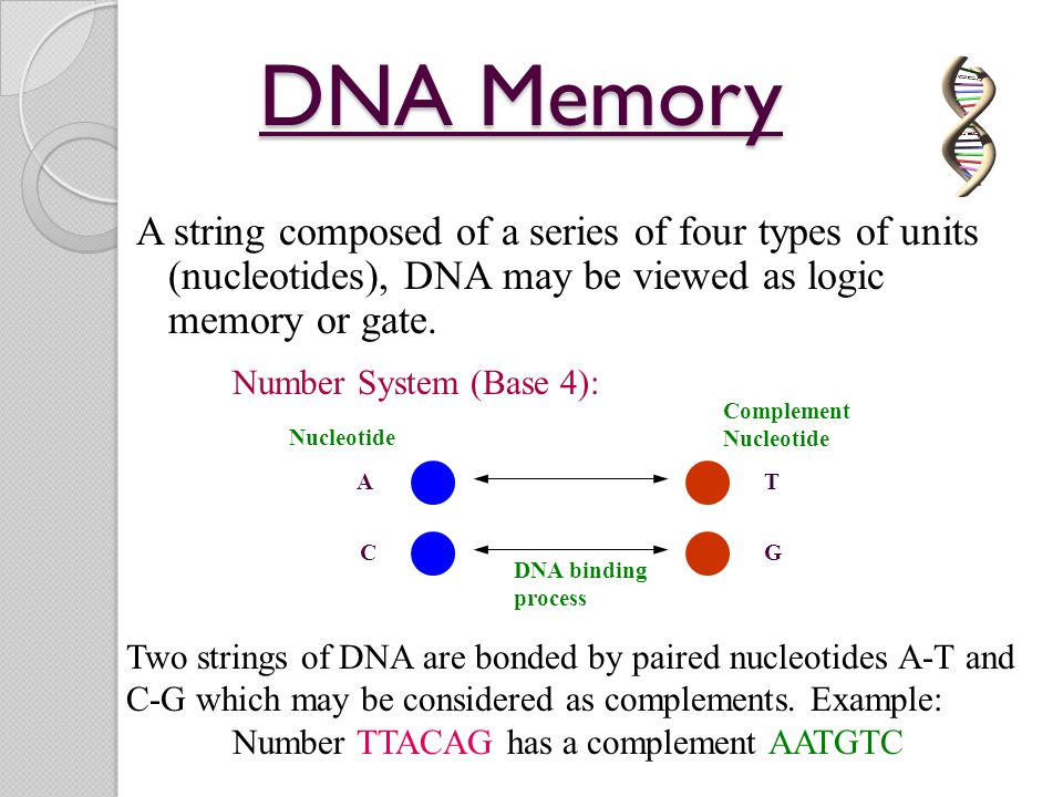 DNA Memory A string composed of a series of four types of units (nucleotides), DNA may be viewed as logic memory or gate.