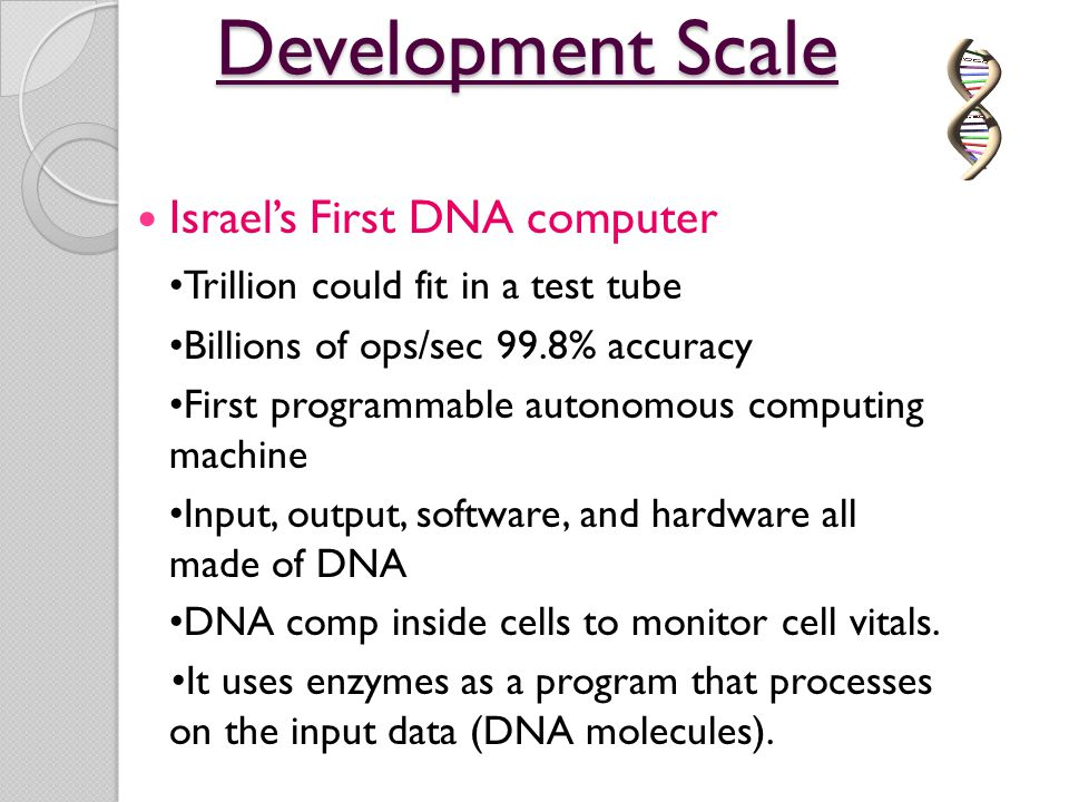 Development Scale Israel's First DNA computer