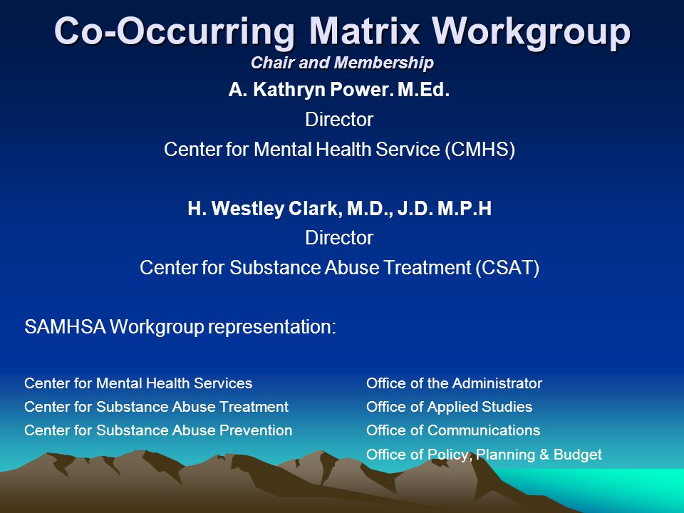 Co-Occurring Matrix Workgroup Chair and Membership