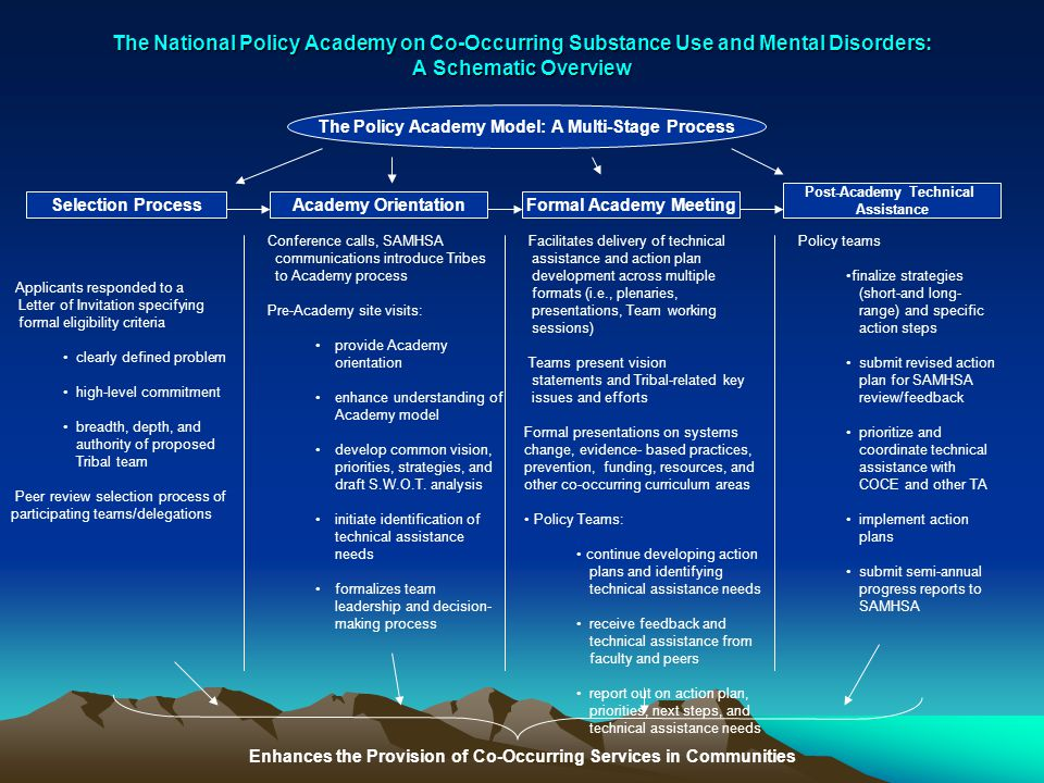 The National Policy Academy on Co-Occurring Substance Use and Mental Disorders: A Schematic Overview