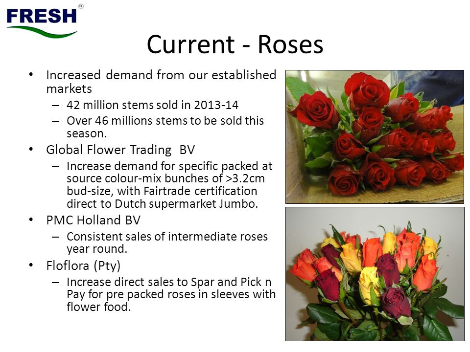 Current - Roses Increased demand from our established markets