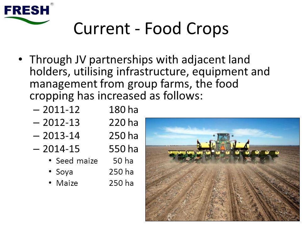 Current - Food Crops
