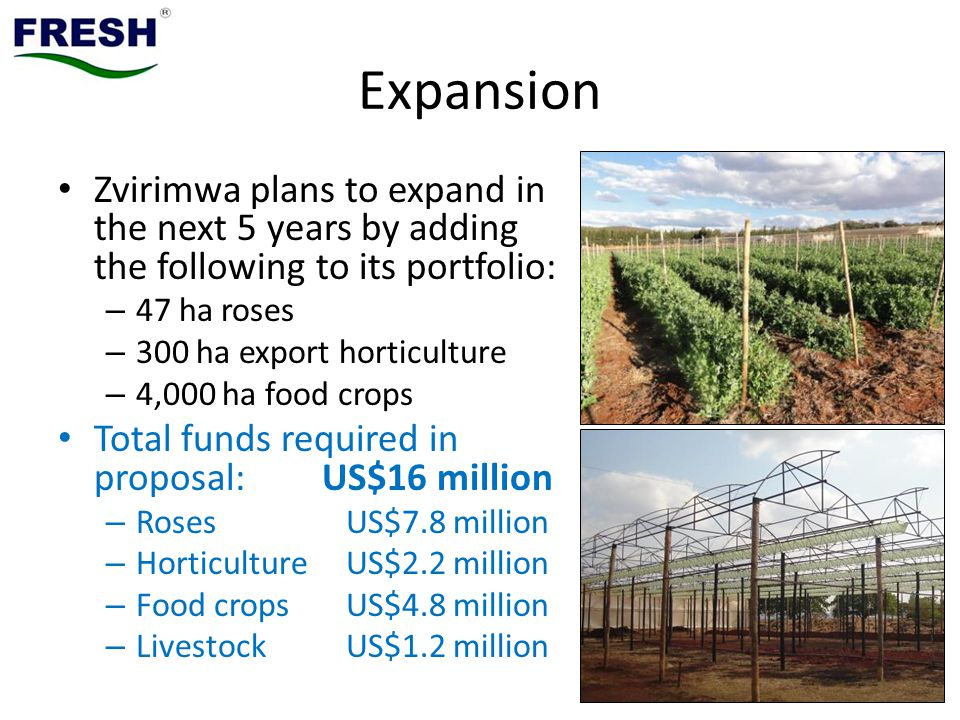 Expansion Zvirimwa plans to expand in the next 5 years by adding the following to its portfolio: 47 ha roses.
