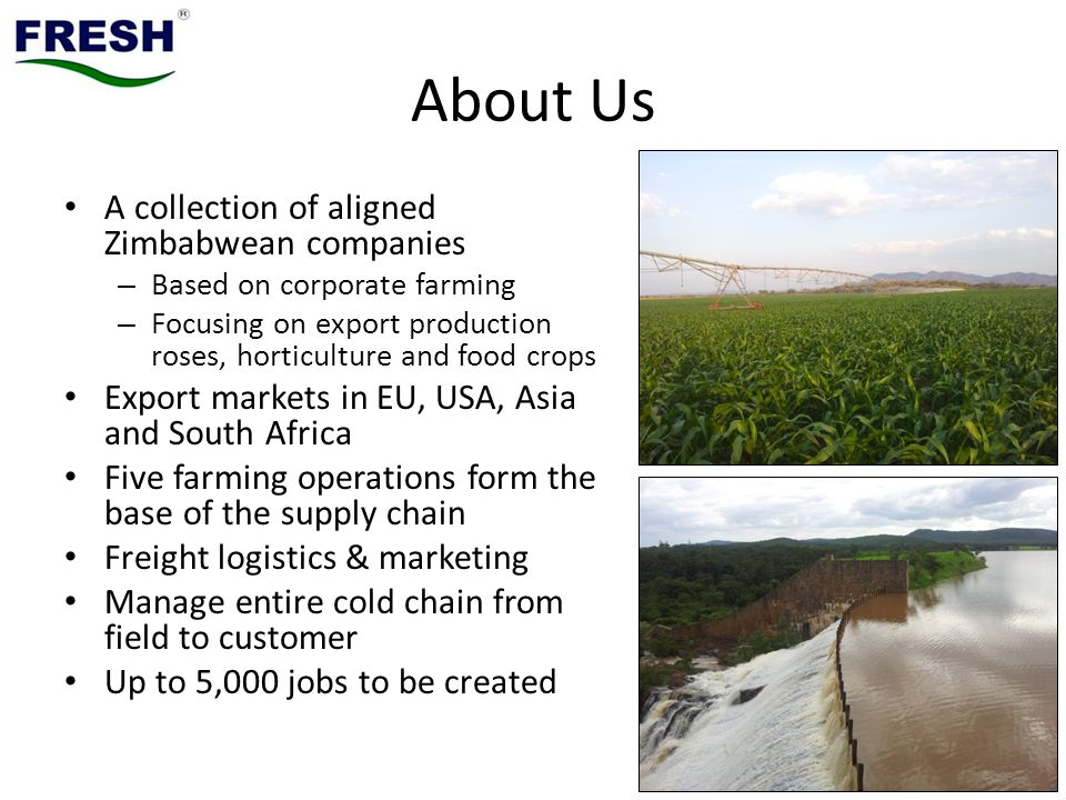 About Us A collection of aligned Zimbabwean companies