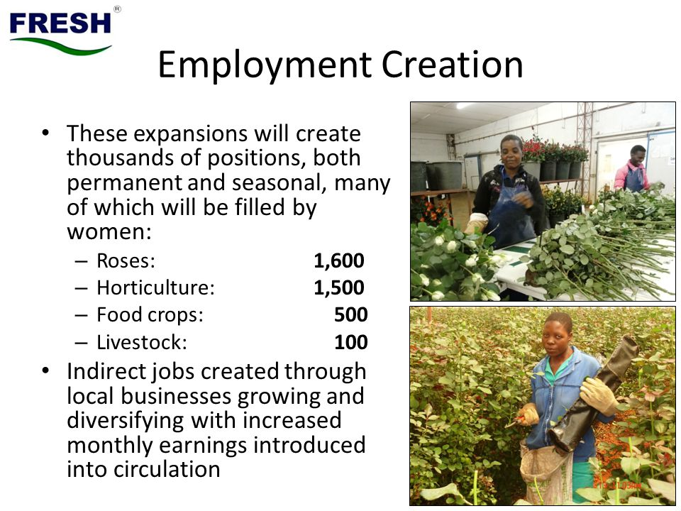 Employment Creation These expansions will create thousands of positions, both permanent and seasonal, many of which will be filled by women: