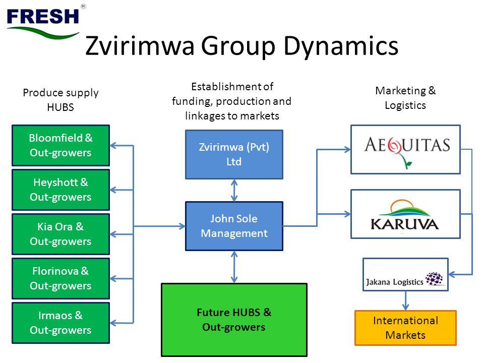 Zvirimwa Group Dynamics
