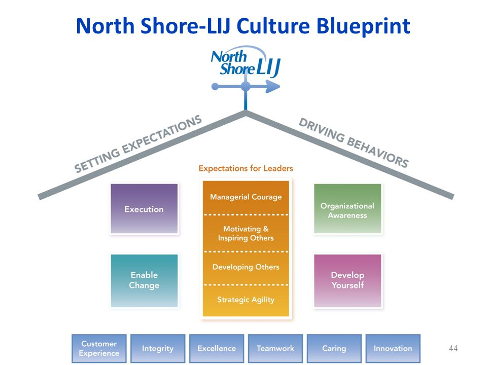 North Shore-LIJ Culture Blueprint