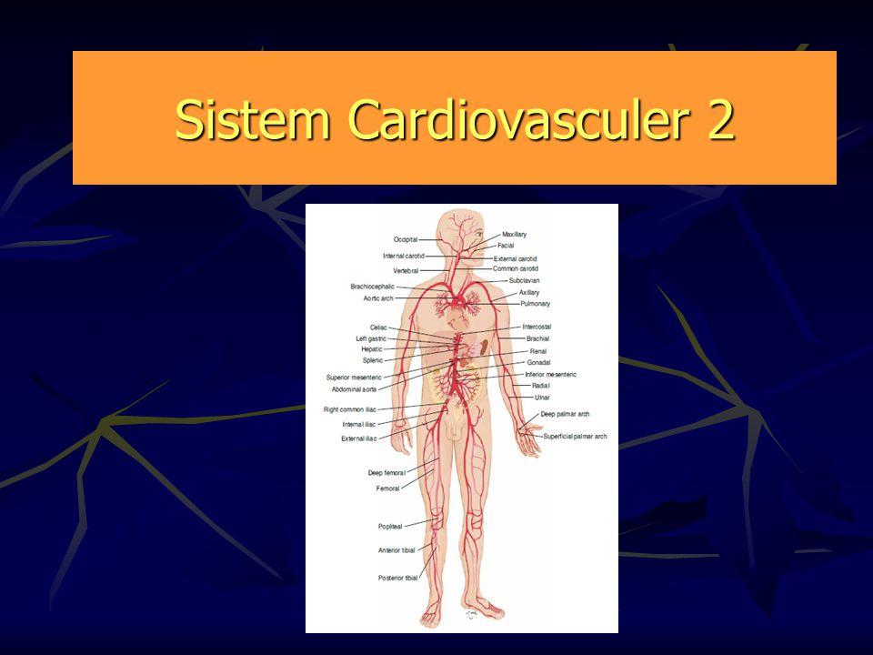 Sistem Cardiovasculer 2