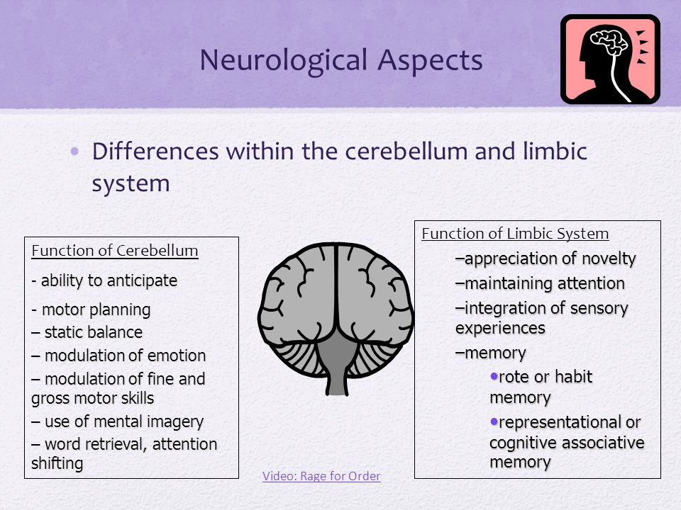 Neurological Aspects Differences within the cerebellum and limbic system. Function of Limbic System.