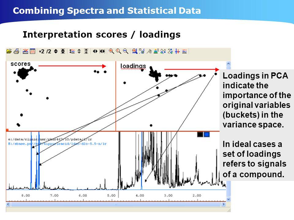 Interpretation scores / loadings