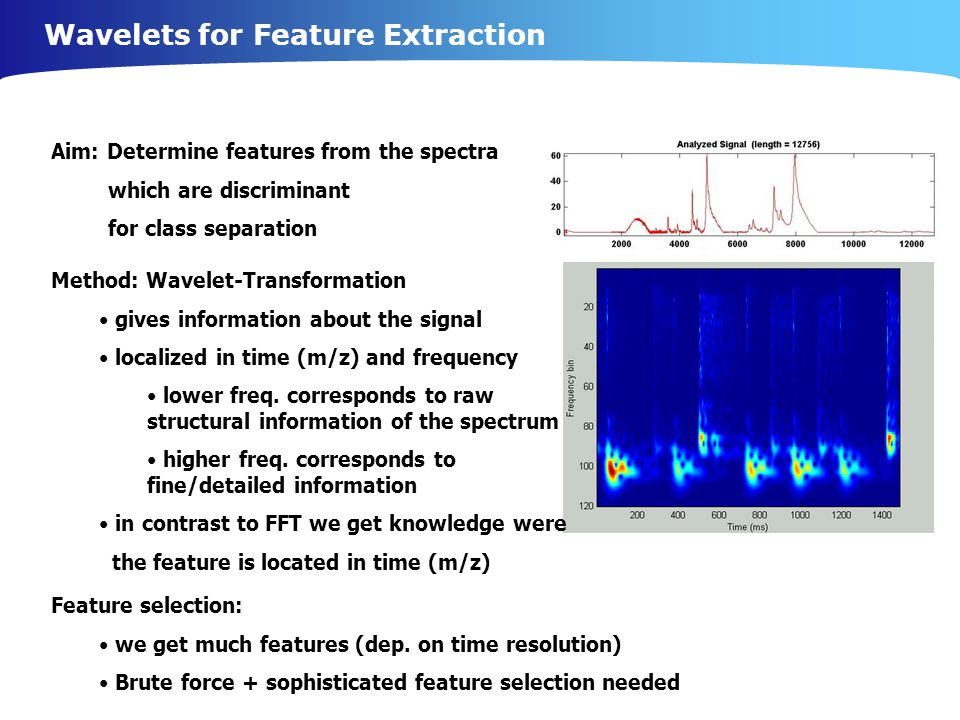Wavelets for Feature Extraction