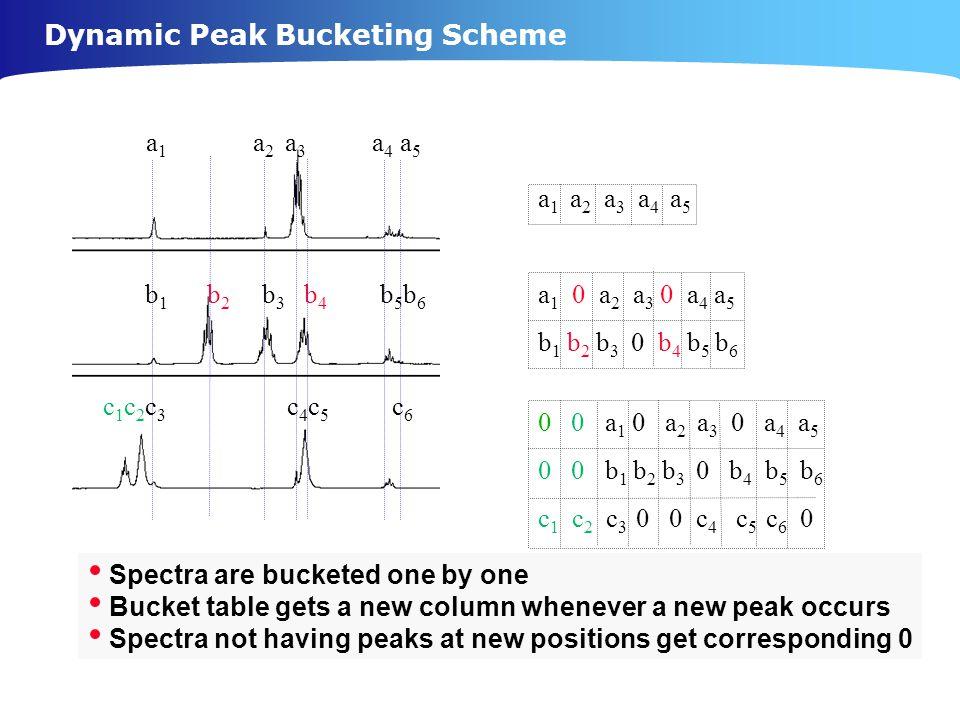 Dynamic Peak Bucketing Scheme