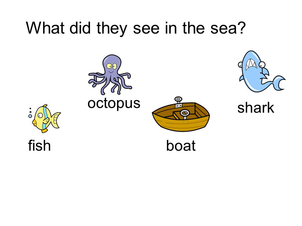 What did they see in the sea