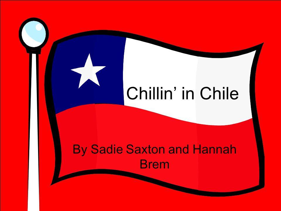 By Sadie Saxton and Hannah Brem