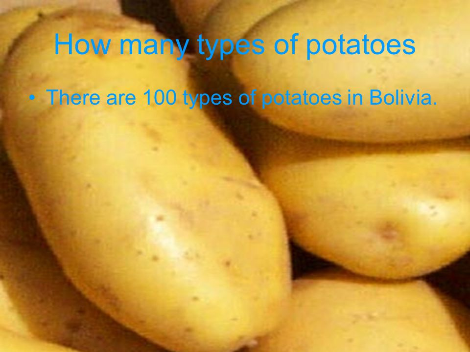 How many types of potatoes