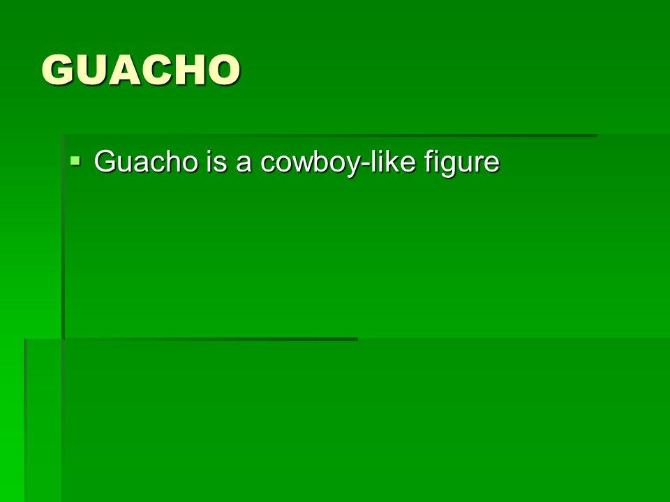 GUACHO Guacho is a cowboy-like figure