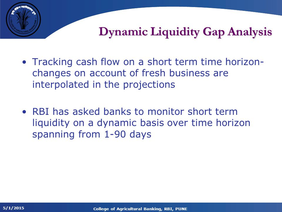 Dynamic Liquidity Gap Analysis
